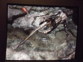 Most Painful Way to Die in Skyrim by Kamellion