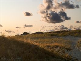 Dunes 6 by rici66