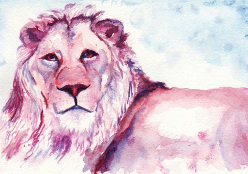 lion by sarahbbutler