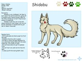 Character Sheet- Shidobu by Angel-soma