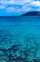 Clear Water, Fiji by jadennyberg