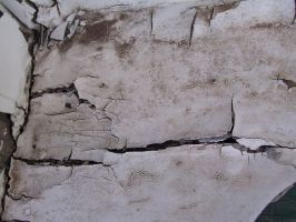 Oklahoma Cracked Paint 8 by Falln-Stock