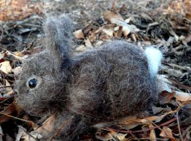 needle felted bunny 'basil' by Throughawolfseyes