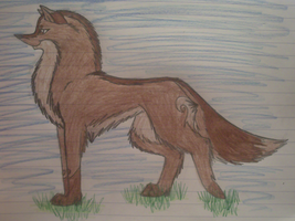Wolf for the contest by Wolfie-Freya