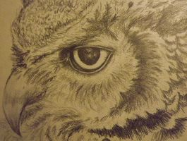 Owl by RomiaNyan