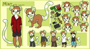 Fursona Ref Sheet- Mint 2012 by Star-Swirls