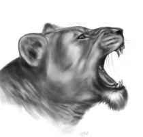 .::lion::. by egustus