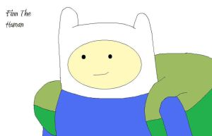 Finn The Human by DragonBallZGuy99