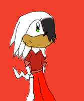 Crow the Echidna by Krystal-the-hedgehog