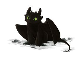 HTTYD Toothless by Korikian