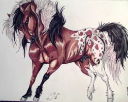 Rokslyde -Rival Stallion- by MWRoach