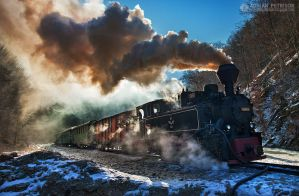 Steam train in Maramures 05 by adypetrisor
