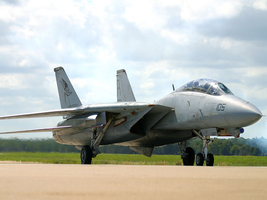 F-14 coming to roost by Hun100D
