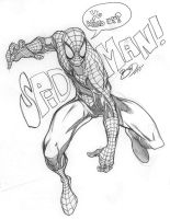 SpiderMan Yo by bathill8