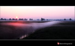 'Musings At Dawn' by Betuwefotograaf