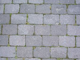 Brick Paving Texture 02 by Lengels-Stock