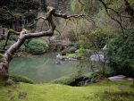 Japanese Gardens 1 by nie-chan