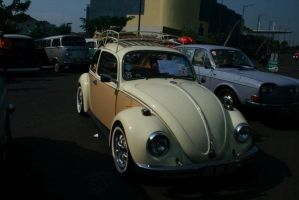 Two Tone Beetle by atot806