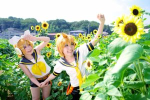 sunflower Kagamine by Maho-Urei