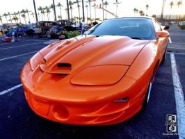 Orange Hot Firebird by Swanee3