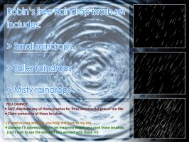 Raindrop Brush Set (Photoshop CS series) by Robinsimpressions