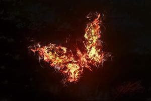 Fire Butterfly by Neevel-MB