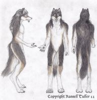 Anthro Wolf Costume Concept by TheCostumeArchive