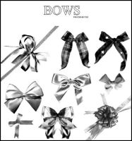 Bows Brushes by AlenaJay