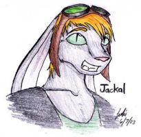 Request - Jackal the Bunny by trisis