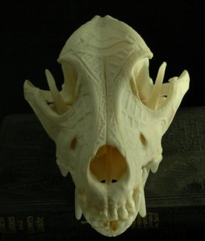 Dog skull, engraved, abstract by grygon