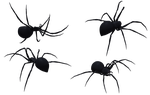 Black Widow Spider Set 10 by Free-Stock-By-Wayne
