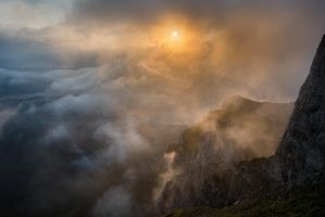 foggy morning by Photorotic