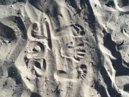A trace in the Sand by socks-15