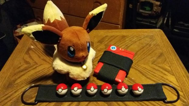 Pokemon Cosplay Items by starynight9846