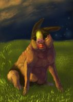 And finally Tepig by rajewel
