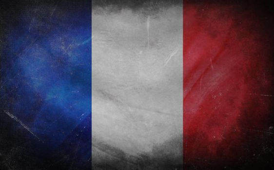 Flag of France by arj-89