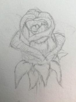 Rough Rose Sketch by TheSilentVoice-Arts