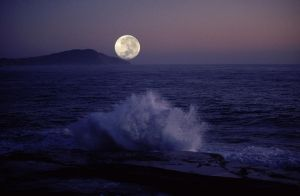 Moon On The Rise by jbrum