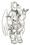 hippogryph pirate by Sheana