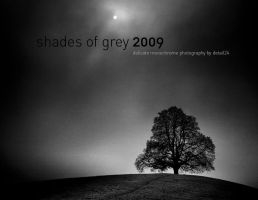 shades of grey calender 2009 by detail24