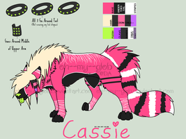 Cassie Reference 2012 by oh--my--glob