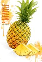 PINEAPPLE by mongso