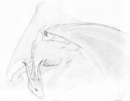 An early dragon sketch by Mischievous-Moonie