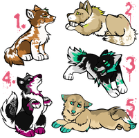 Free Pup Adoptables 2. c: by thewindwhisper