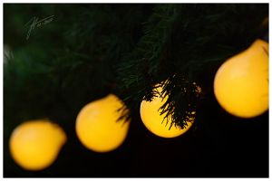 Christmas Lights - Part 2 by janey-in-a-bottle