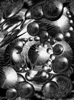 Birds' song in the forest by HelaLe