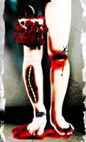 roses from the legs by phanxine