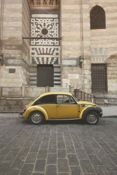 Beetle by HONEST-STYLE