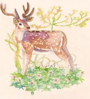 Flowers and deer by merrinou