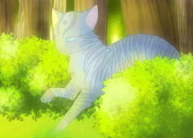 Jayfeather in the forest by Shatterwing123